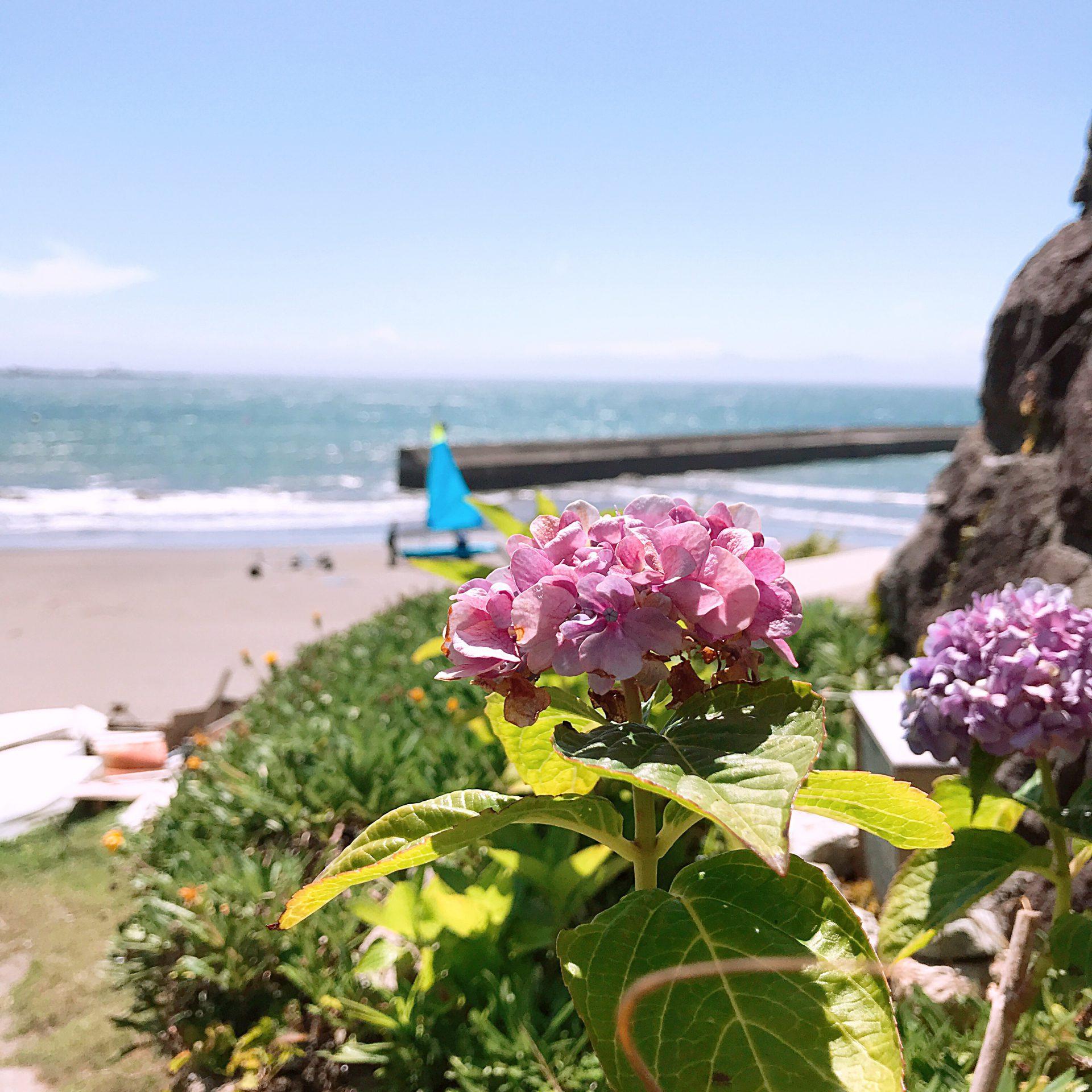 海を満喫するならここ!!TOMORROWLANDが主宰する葉山のカフェCABaN 🏖
